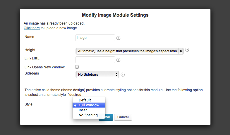 full-window-image-module