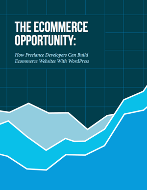 The Ecommerce Opportunity