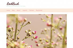 redbud-featured-image