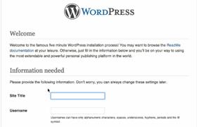 manual-wordpress