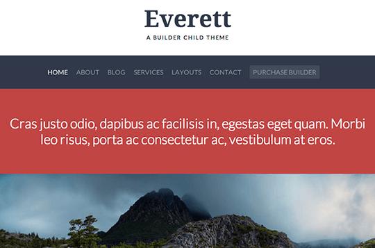 everett-product-image