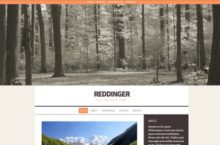 Reddinger-iThemes-Product-Image