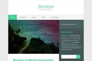 benthos-ithemes-product