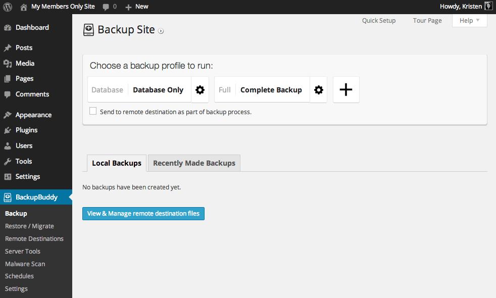 BackupBuddy-dashboard