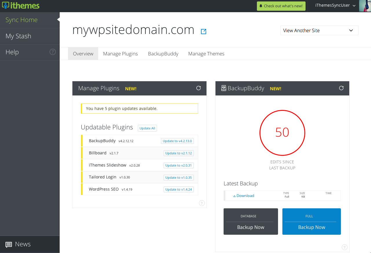 iThemes-Sync-individual-site-view