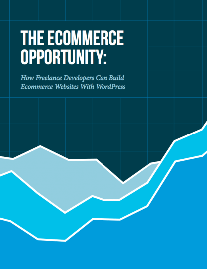 ecommerce-opportunity