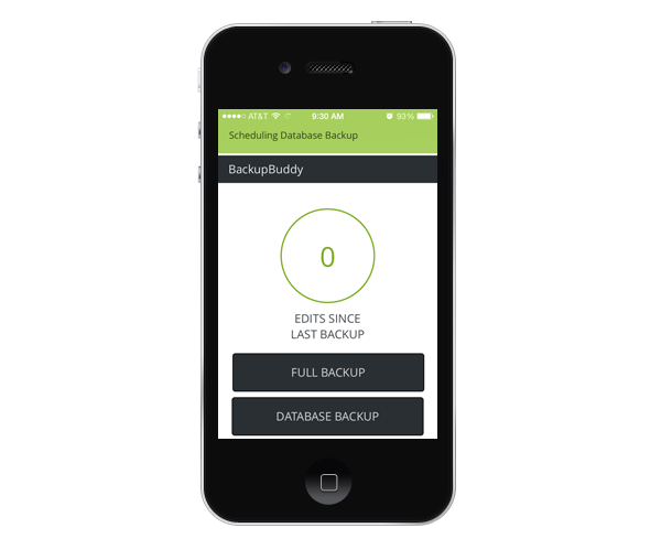 sync-app-backupbuddy