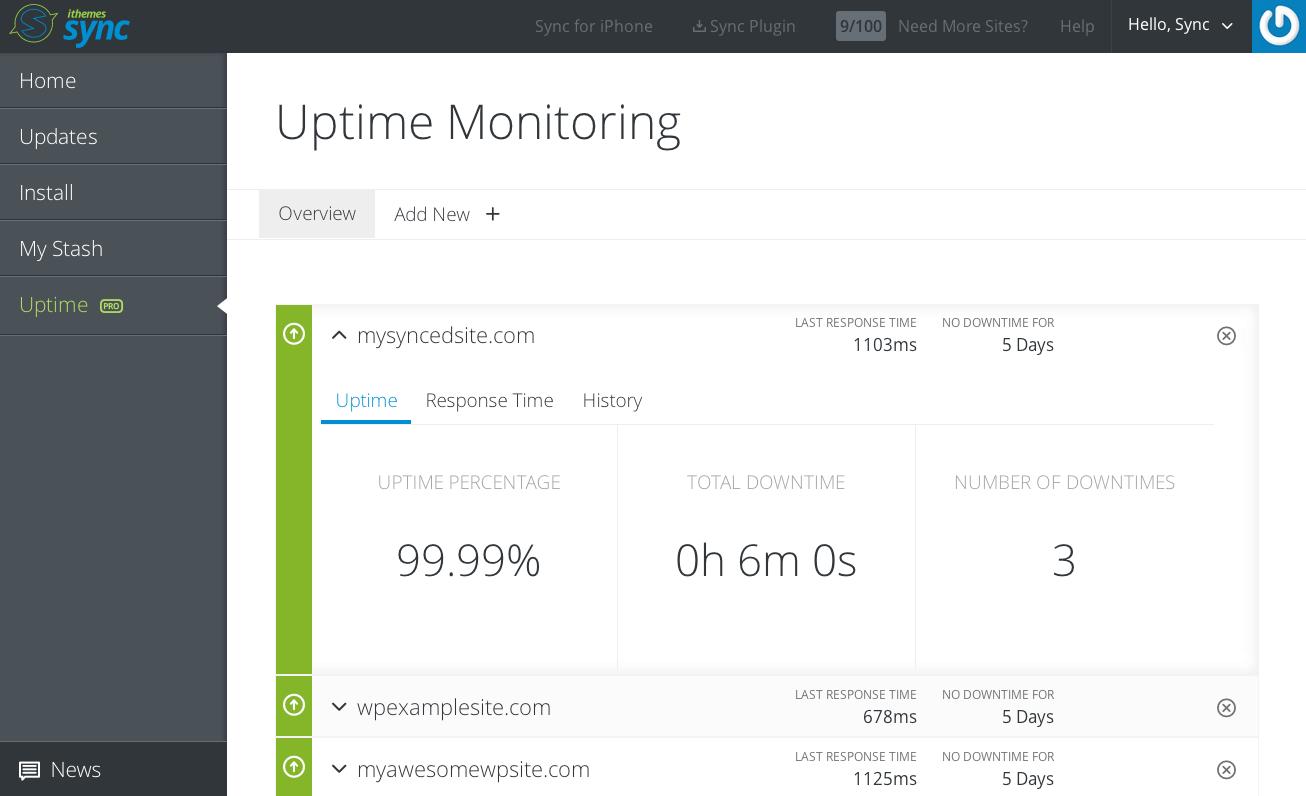 uptime-monitoring-detail