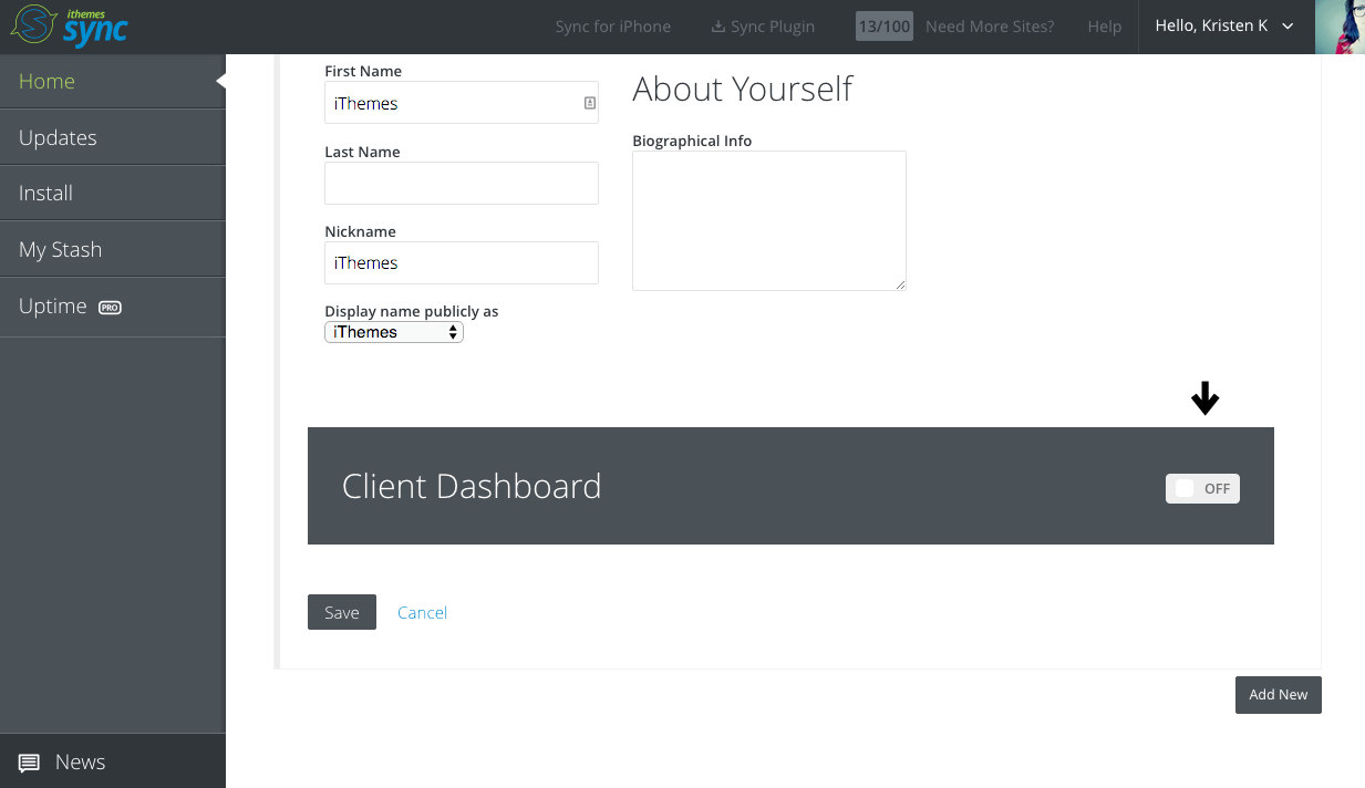 ithemes-sync-client-dashboard-step3