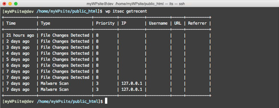 WP-CLI commands ITSEC PRO edited