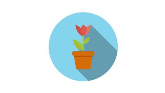 Flat Design Concept Flower in Pot  Illustration With Long