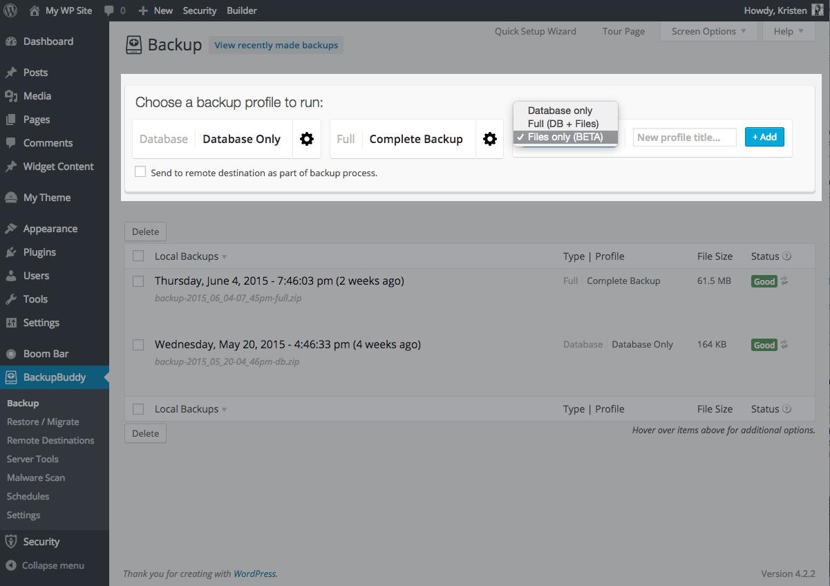 backup-files-wordpress-site