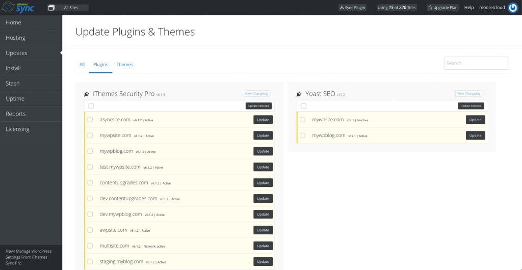 Sync Update Plugins and Themes