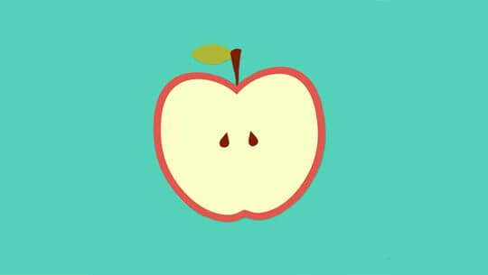 Flat Design Concept Apple  Illustration With Long Shadow.
