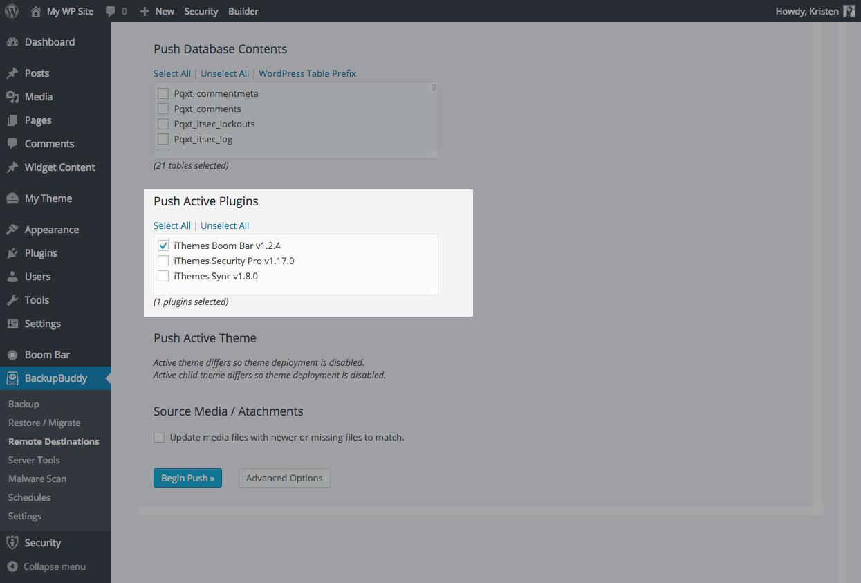 push-active-plugins-wordpress