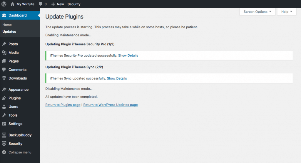 wordpress plugins updated successfully