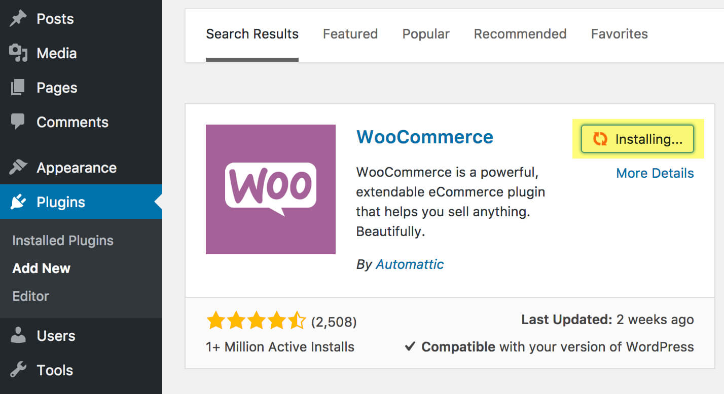 how to use WooCommerce with Stripe