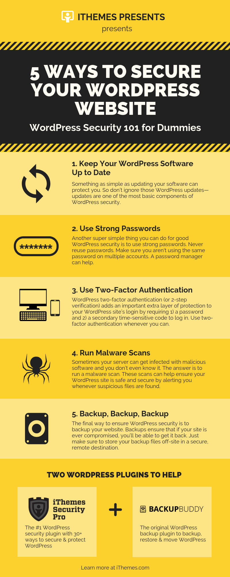 Ways to Secure Your WordPress Website Infographic
