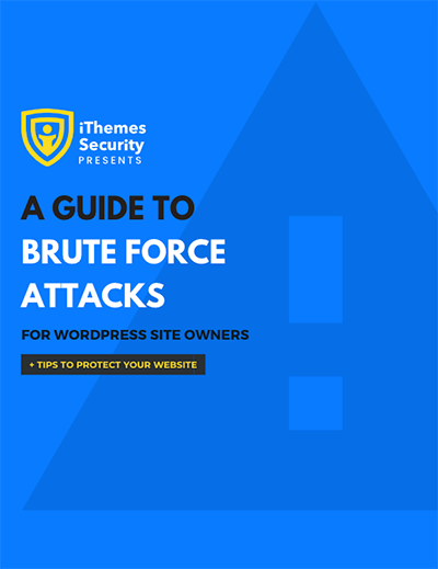 brute force attacks guide