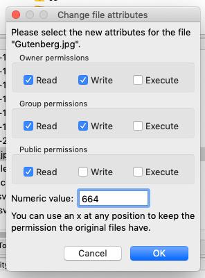 403 Forbidden Error - File Permissions