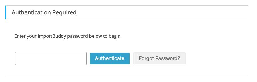 BackupBuddy Restore - ImportBuddy Password