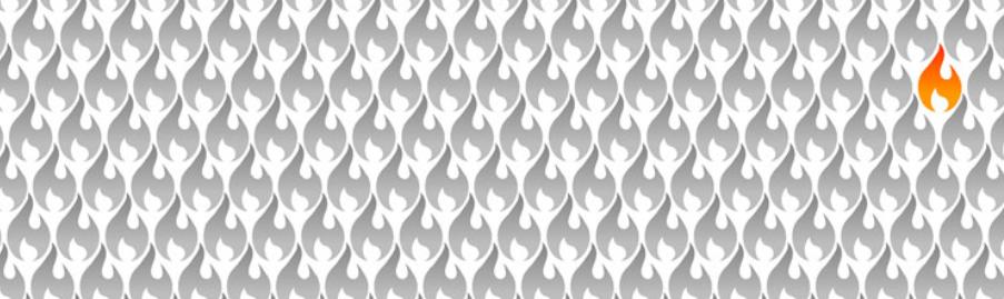 Deny All Firewall Logo