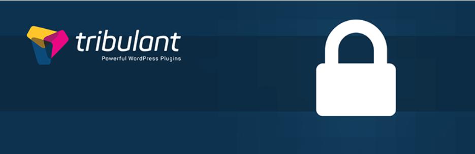 One Click SSL Logo