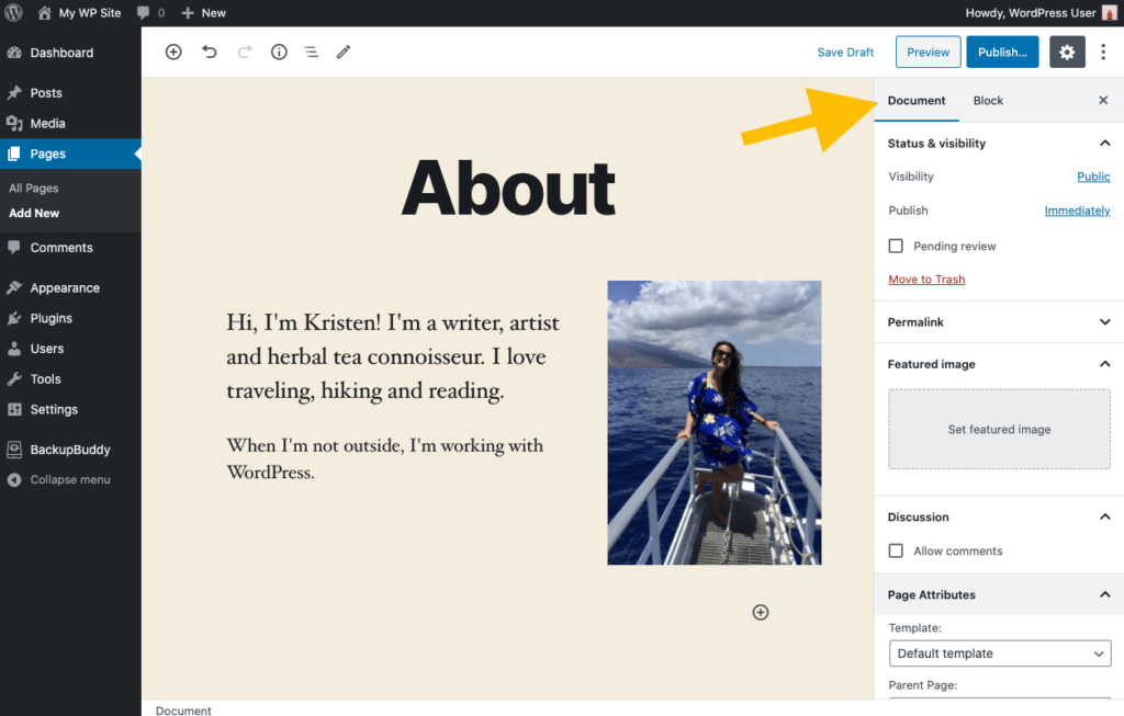 WordPress document settings