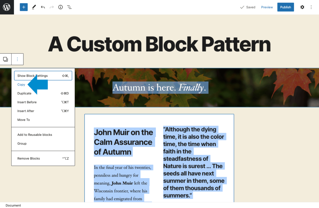 copy wordpress blocks