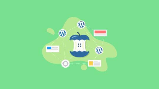 WordPress core